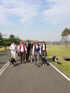 explorers &  dogs