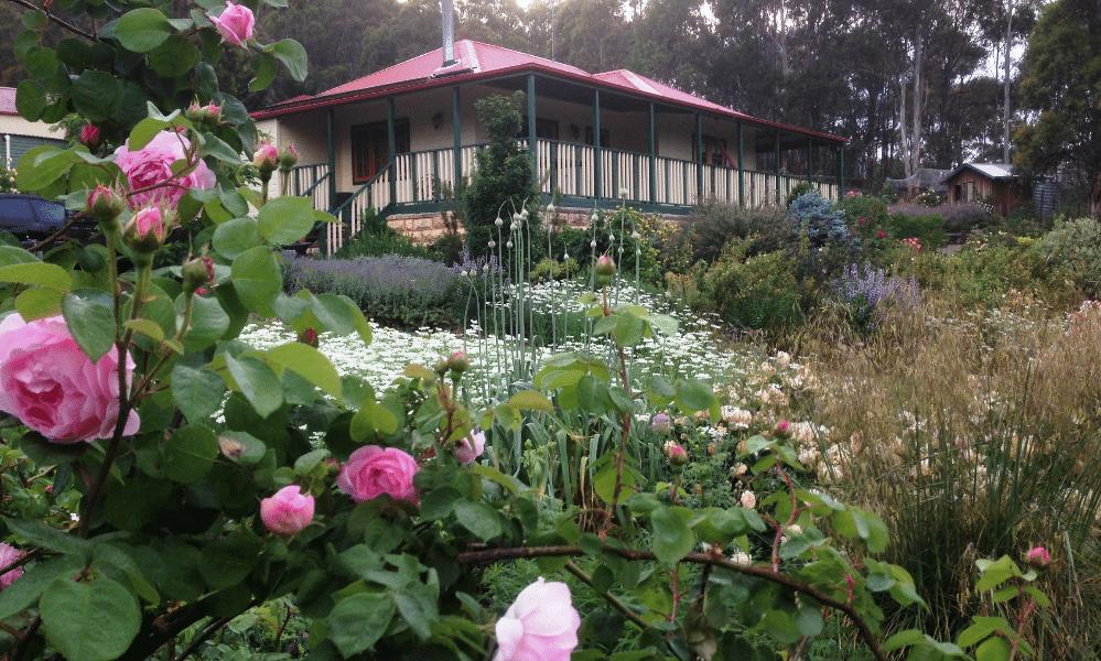 Stephen Vella Open Garden